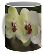 Orchid White Trio Coffee Mug