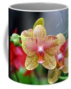Orchids 35 Coffee Mug