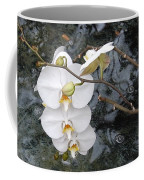 Orchids And Water Coffee Mug