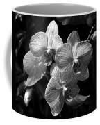 Orchids In Black And White Coffee Mug