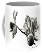 Orchids In Black Coffee Mug