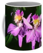 Orchids In Costa Rica Coffee Mug