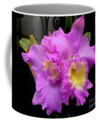 Orchids In Fuchsia  Coffee Mug