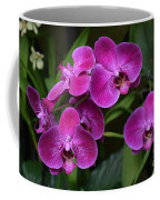 Orchids In Vivid Pink  Coffee Mug