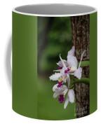 Orchids On A Tree Coffee Mug