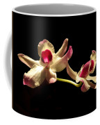 Orchids Only Coffee Mug