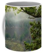 Oregon Fir Washington Forest Coffee Mug