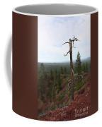Oregon Landscape - Confused Tree At Lava Butte Coffee Mug