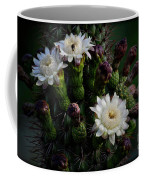 Organ Pipe Cactus Flowers  Coffee Mug