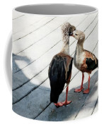 Orinoco Geese Touching Heads On A Boardwalk Coffee Mug