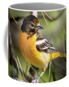 Oriole And Pine Cone Coffee Mug
