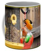 Oriole N Finch Coffee Mug