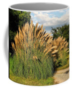 Ornamental White Pampas Grass-1 Coffee Mug