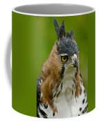 Ornate Hawk Eagle Coffee Mug