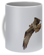 Osprey Aloft Coffee Mug