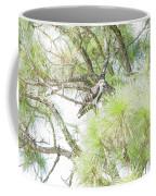 Osprey Applesauce Coffee Mug