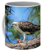 Osprey Breakfast Break Coffee Mug