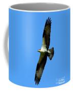 Osprey Carrying A Fish Coffee Mug