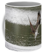 Osprey Dive Coffee Mug