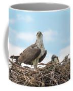 Osprey Family Coffee Mug