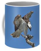 Osprey Feeding On A Fish Coffee Mug