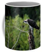 Osprey Gaze II Coffee Mug