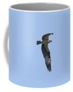 Osprey In Flight 2 Coffee Mug