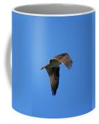 Osprey In Flight 3 Coffee Mug