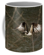 Osprey In The Creek Coffee Mug