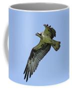 Osprey June 2010 Coffee Mug