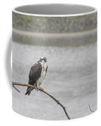 Osprey Looking Over The Rogue River Coffee Mug