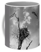 Osprey Nest Coffee Mug