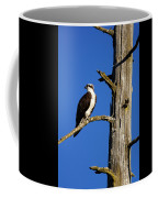 Osprey Nest Guard - 001 Coffee Mug