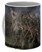 Osprey Protecting The Nest Coffee Mug