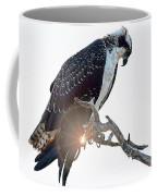 Osprey Silhouette Coffee Mug