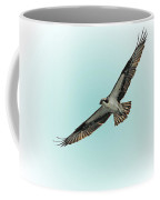 Osprey Soar 2 Coffee Mug