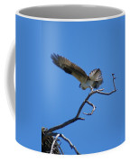 Osprey Takeoff Coffee Mug