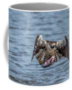 Osprey With Catch 9108 Coffee Mug