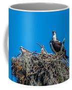 Osprey With Chicks Coffee Mug