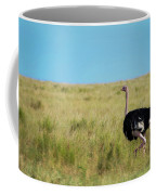 Ostrich On The Run Coffee Mug