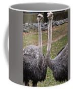 Ostrich Twins 2 Coffee Mug