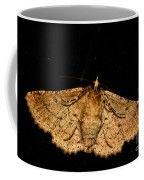 Other Side Of The Moth On The Window Coffee Mug