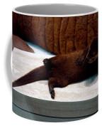 Otter Like It Coffee Mug