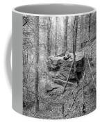 Outcrop, Woods, Dipton Burn Coffee Mug