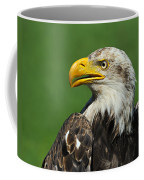 Over The Shoulder Coffee Mug