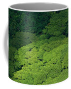 Over The Treetops Coffee Mug