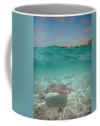 Over-under Water Of A Stingray At Bora Bora Coffee Mug