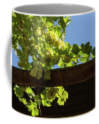 Overhead Grape Harvest - Summertime Dreaming Of Fine Wines Coffee Mug
