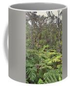 Overlooking The Rainforest Coffee Mug