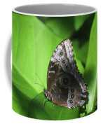 Owl Butterfly On A Cluster Of Green Leaves Coffee Mug